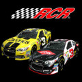 2014 NSCS No. 3 DOW/Cheerios Chevrolet SS